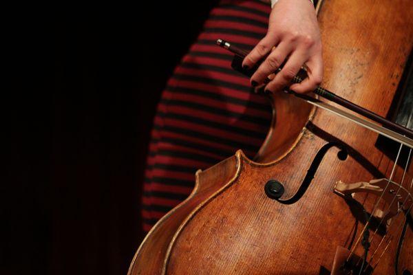 image from www.whatstheruckus.com